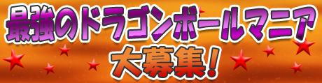 hokotate_dragonball_splash